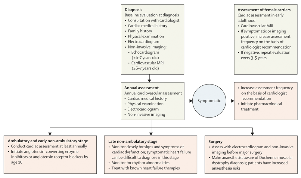 Figure 11. Surveillance, Assessment, and Management of the Cardiac Team